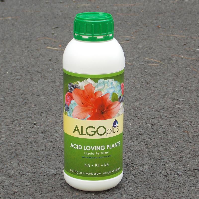 CS/12 (ALGO) ACID LOVING PLANT FERTILIZER