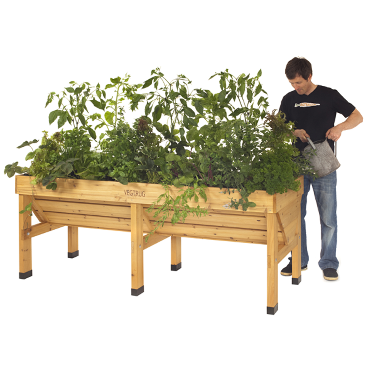 Pallet/12 - MEDIUM VEGTRUG