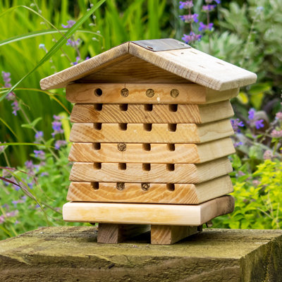 Cs/3 - Solitary Bee Hive