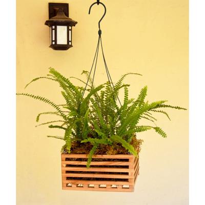 Cs/18 - Wooden Basket Planters - 8 Square