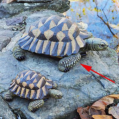 CS/2 - Large Resin Tortoise