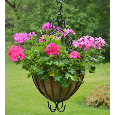 16 Spanish Hanging Planter w/Natural Coco Liner