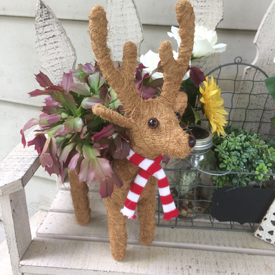 Cs/5 - Cocoa Topiary Reindeer Planter