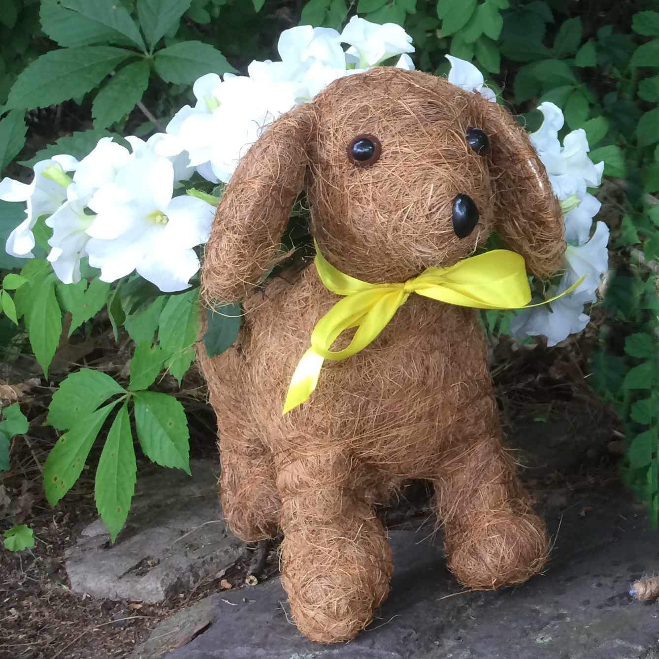 Cs/5 - Daisy Topiary Dog Planter