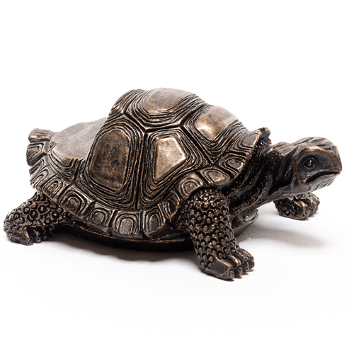 Tortoise Pot Feet (set of 3) -Antique Bronze