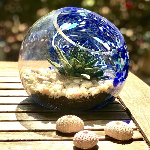 Cs/3 -  7 Pacific Coast Blue Handblown Art Glass Terrarium / Candle Holder