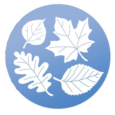 CS/10 - Leaf Medley Window Decals
