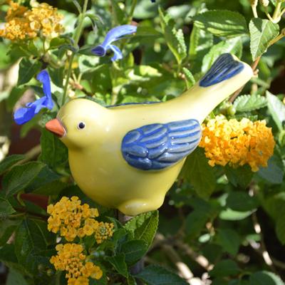 Bluebirds & Yellowbirds of Happiness
