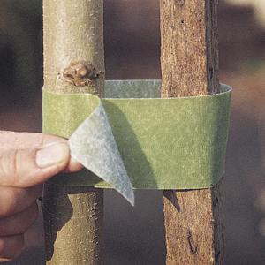 Plant Ties
