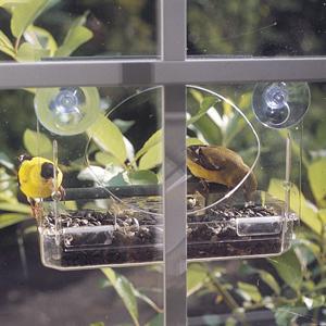 Window Feeders