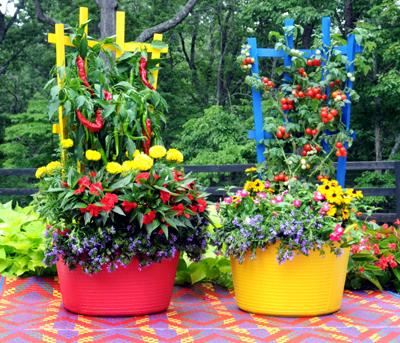 Colorful Trugs & Trellises