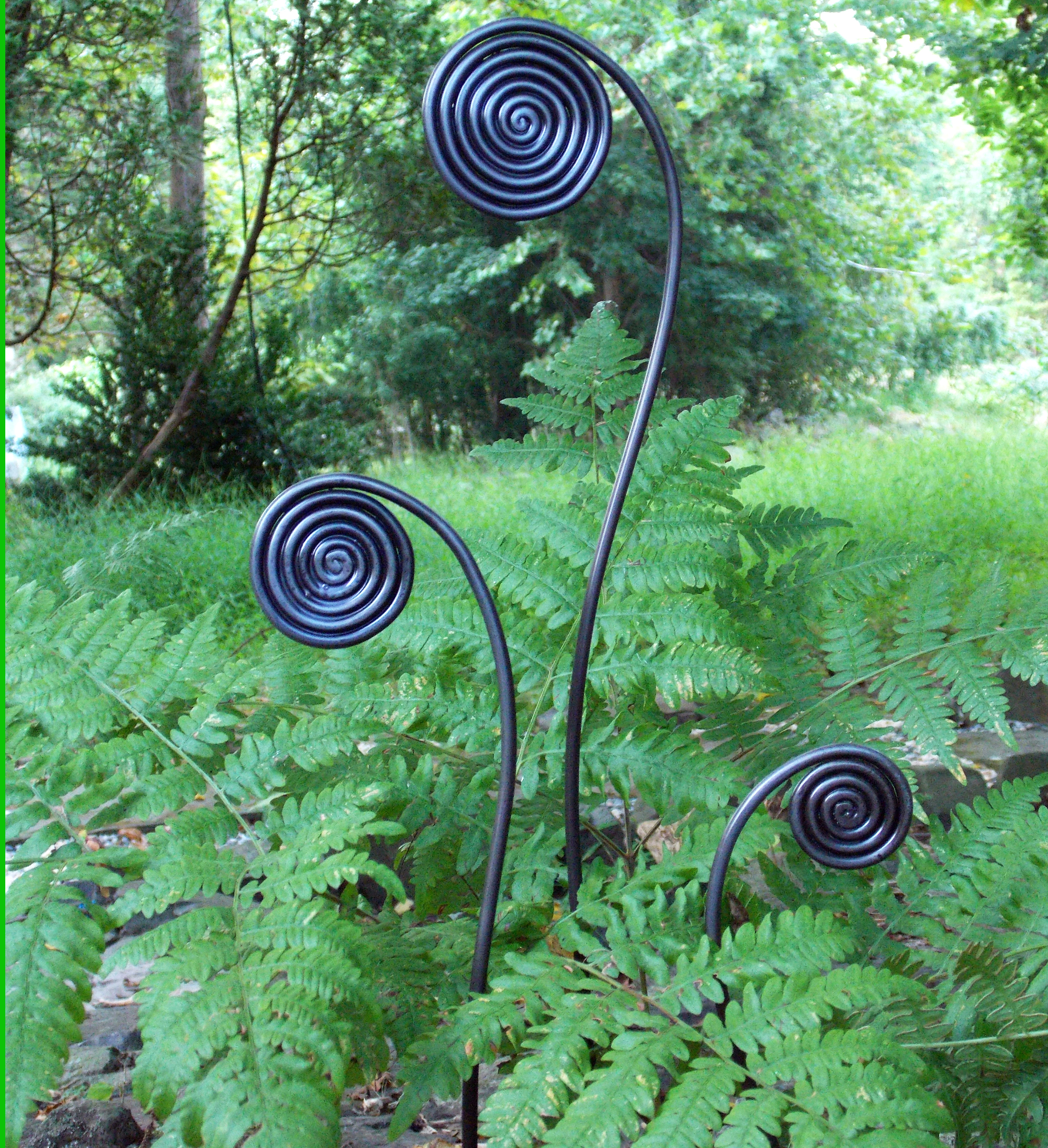 Fiddlehead Fern Design - Stakes, Trellises, Arches