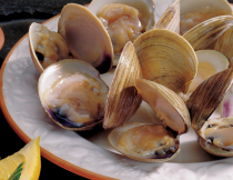 1 lb. Littleneck Clams
