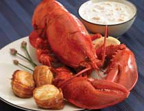 Lobster, Chow, Bacon Scallops for Two (1.25 lb. Lobsters)