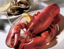 Maine Event for Two (1.25 lb. Lobsters)