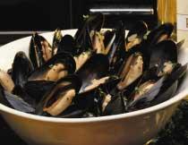 10 lb. Bag of Mussels