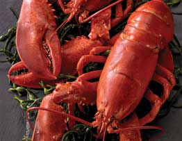 whole lobsters delivered