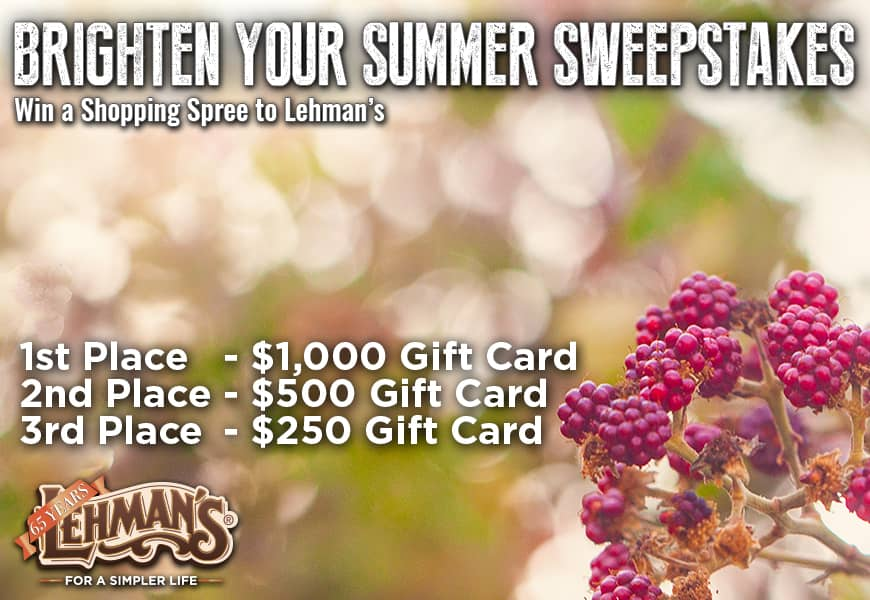 Brighter Summer Sweepstakes 2020