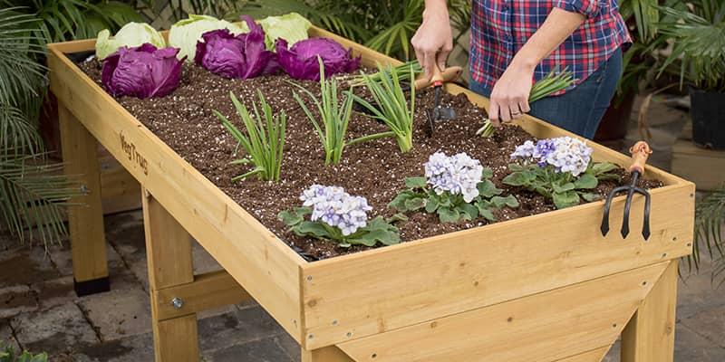 Shop Garden Accessories