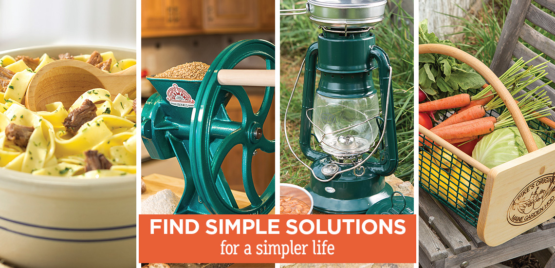 Find Simple Solutions
