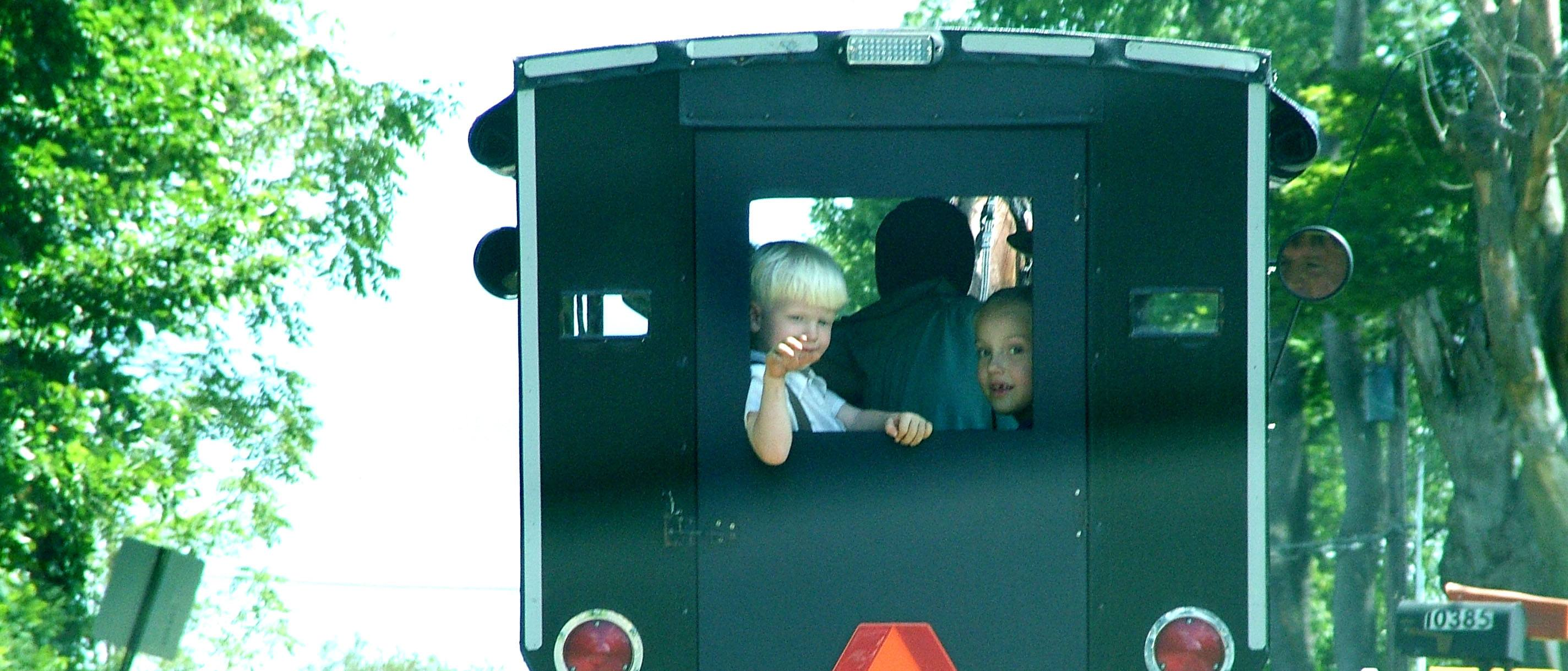 Children peering out of the back window of a buggy