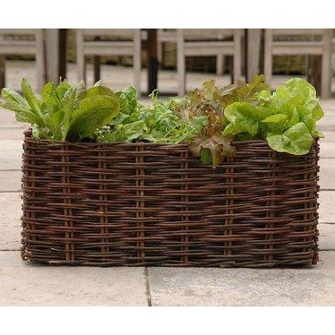 Rectangle Willow Salad Planter