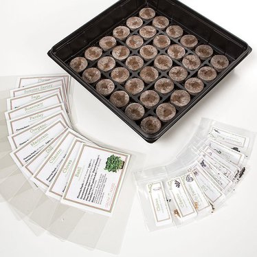 Countertop Herb Garden Kit : ... Farm, Garden & Tool / Seeds and Planting / Culinary Herb Garden Kit