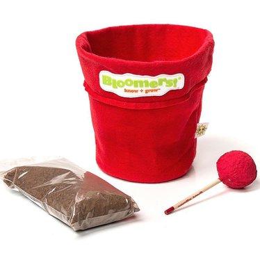 LolliPot Gardening Kit