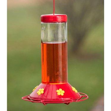 Glass Hummingbird Feeder and Nectar