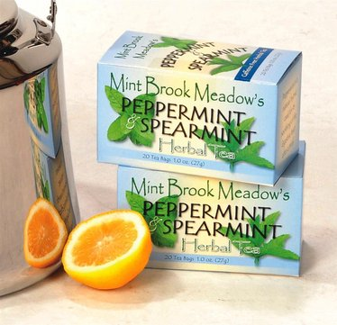 Peppermint and Spearmint Tea