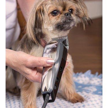 Pet Clipper Kit