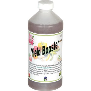 Natural Yield Booster for Seedlings