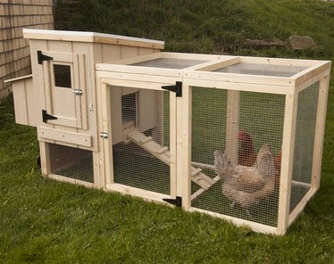 Portable backyard chicken coop animal care lehman 39 s for Mobile chicken coop plans