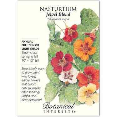 Nasturtium Jewel Blend Seeds