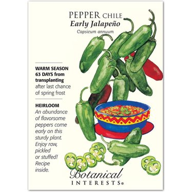 Pepper Chile Early Jalapeno Heirloom Seeds