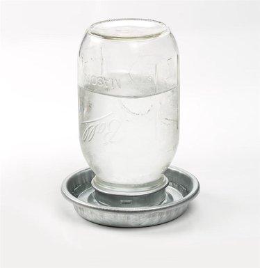 Jar Chicken Waterer