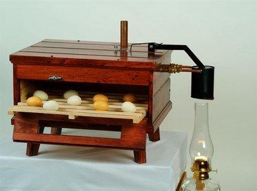 Kerosene Powered Chicken Egg Incubator Animal Care Lehman S
