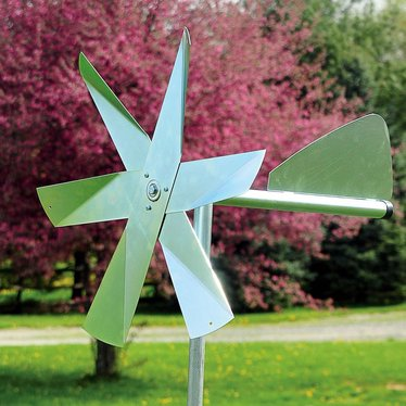 Mole Chasing Windmill Lehman S