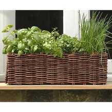 Willow Window Box Planter