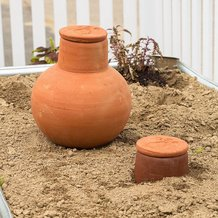 OLLA Watering Pot