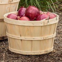 Old-Time Poplar Half Bushel Baskets - Pack of 2