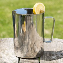 Stainless Pitcher with Ice Guard