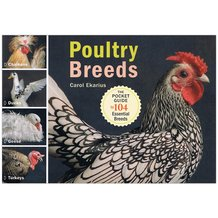 The Pocket Guide to Poultry Breeds