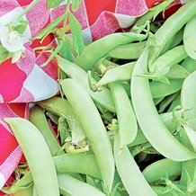 Amish Snap Pea Seeds