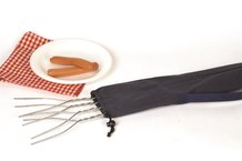 Hot Dog Roaster Set with Carrying Bag
