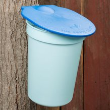 3-Gallon Sap Bucket