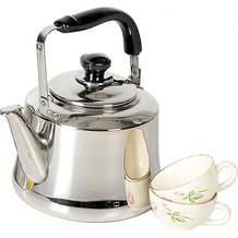 Stainless Steel Spout Kettle - 1 Gallon