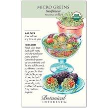 Microgreens Sunflower Organic Heirloom Seeds