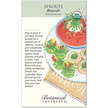Sprouts Broccoli Organic Seeds