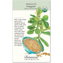 Sprouts Fenugreek Organic Seeds
